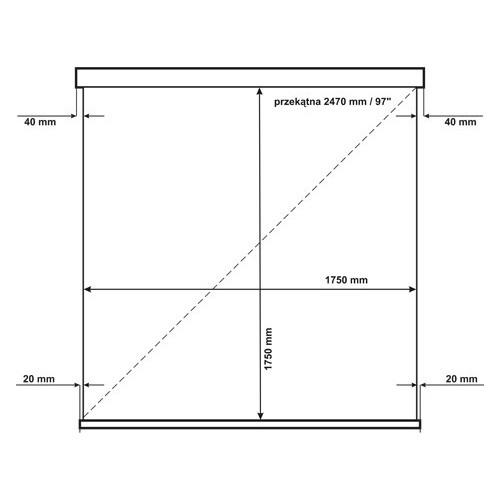 Ekran AVtek Wall Standard 175 1:1
