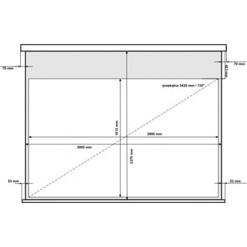 Ekran projekcyjny elektryczny AVtek Business Premium 300BT 16:10