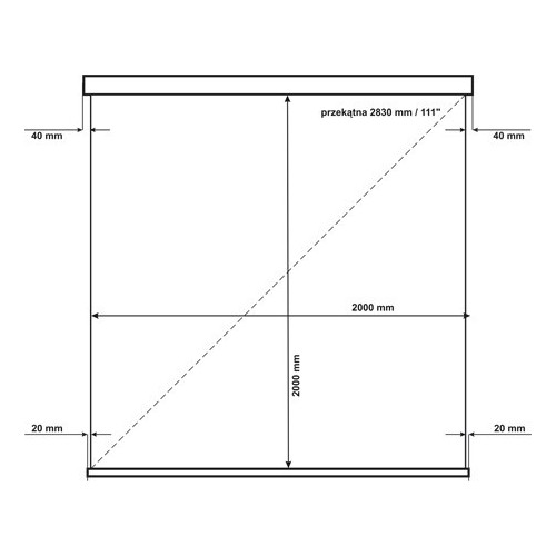 Ekran AVtek Wall Standard 200 1:1