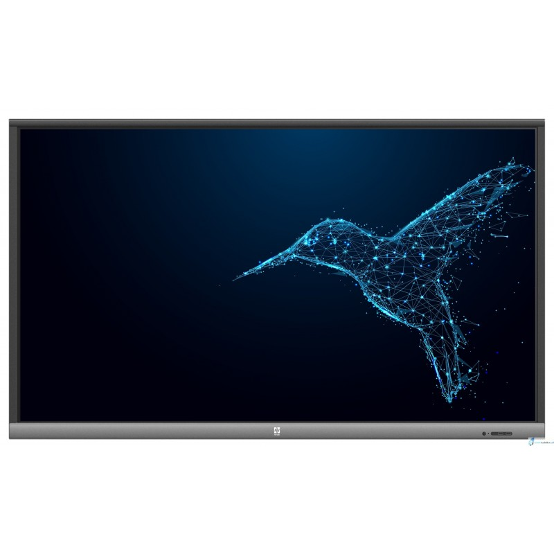 Avtek Touchscreen 5 Lite 55""