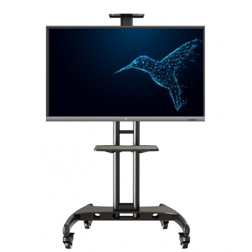 Zestaw monitor interaktywny Avtek TouchScreen 5 Lite 55 + stojak mobilny